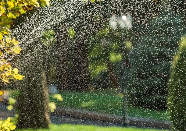 residential-irrigation-installation.jpg