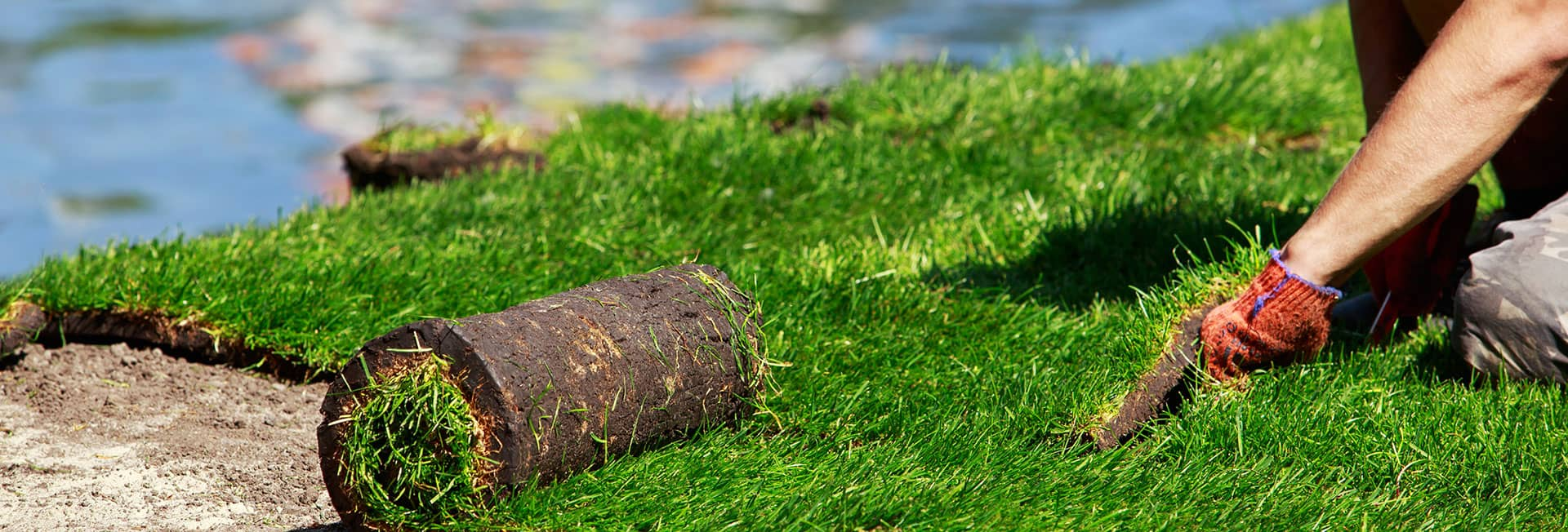sod-and-seed-services-commerial-minnesota.jpg