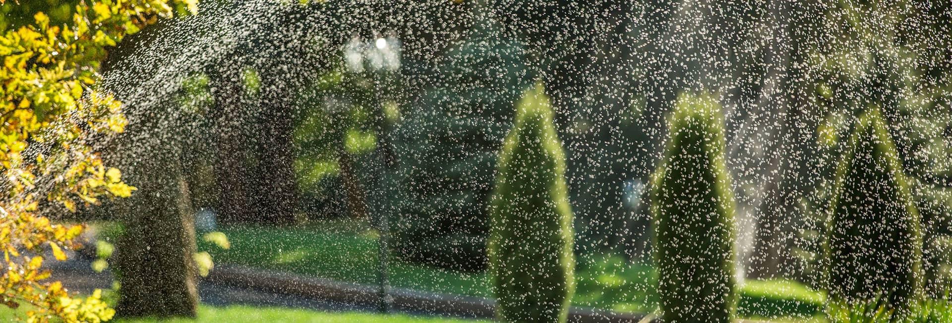 residential-irrigation-minnesota.jpg